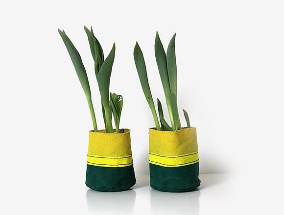 marie-green-yellow_580_440_bri--10_sha-70_s_c1