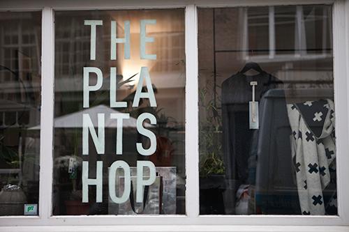 the-plantshop4-belmodo