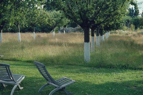 beeld_Offline_Garden_Sfeer